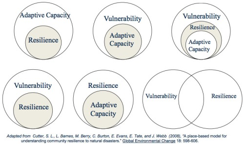 resilience-and-vulnerability